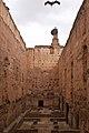 Eurasian White Stork, Palais el-Badi (5038938718).jpg