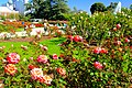 Exposition Park Rose Garden, Exposition Blvd. at Vermont Ave. University Park 10.jpg