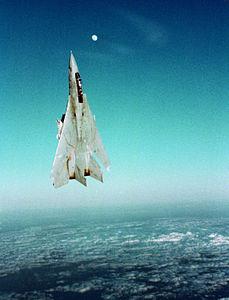 F-14A VF-24 Vertical Climb.JPEG