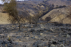 La Jolla Band of Luiseno Indians - Reservation after fires, 10 Nov 2007. Landscape shows a wall built in the first half of the 20th century by the La Jolla tribe to prevent erosion and flooding from washing away their burial grounds