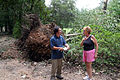 FEMA - 38056 - Preliminary Damage Assessment worker with resident in Mississippi.jpg