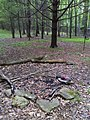 FLT M08 5.81 mi - Bivouac at Bleier Campsite - panoramio.jpg