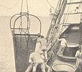 FMIB 53243 Chalut a etriers, arrivant a bord.jpeg