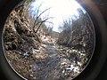 Fall Run Park in Shaler Township, late winter - 17.jpeg