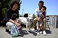 Families find new furry friends at adoption event 140726-M-DN141-006.jpg