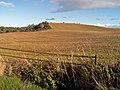Farmland near Earlseat - geograph.org.uk - 266391.jpg