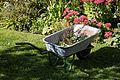 Feeringbury Manor garden wheelbarrow, Feering Essex England.jpg