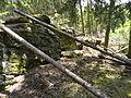 Felsen in der Dehl (Hoch-Weisel) 16.JPG
