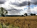 Field and Pylon - geograph.org.uk - 509820.jpg