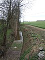 Field ditch-stream at Ramerick Bottom - geograph.org.uk - 386997.jpg