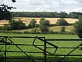 Fields off Sliders Lane - geograph.org.uk - 1402941.jpg