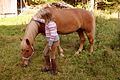 Finnish horse and finnish girl - small.jpg