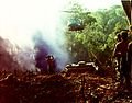 Flickr - The U.S. Army - Vietnam resupply.jpg