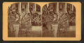 Florida door yard, banana and Century plant, from Robert N. Dennis collection of stereoscopic views 2.png