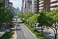 Flower road04n3200.jpg