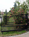 Flowering shrubs and gate Goodnestone Dover Kent England 2.jpg