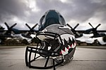 Flying Tigers helmet 161229-F-NI493-022.jpg