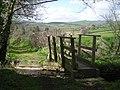 Footbridge on the path to Clun - geograph.org.uk - 1242281.jpg