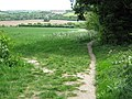 Footpath junction on Darenth Valley Path - geograph.org.uk - 1302870.jpg