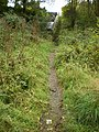 Footpath off Rock Lane - geograph.org.uk - 1535614.jpg