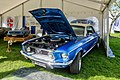 Ford Mustang, 1968 - DR62474 - DSC 0090 Balancer (23801307018).jpg