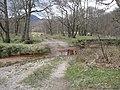 Ford across the River Kinglass - geograph.org.uk - 1248831.jpg
