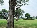 Fort Bonifacio, Taguig, Metro Manila, Philippines - panoramio (12).jpg