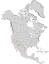 Fraxinus velutina range map 0.png