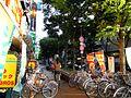 Furukawabashi - panoramio (8).jpg