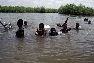 Geography of the Gambia - Image: Gambia 050 from KG