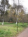 Garden of the Franciscan monastery in Katowice Panewniki 013.JPG