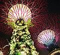 Gardens by the Bay Super Trees at Night, Singapore - panoramio.jpg