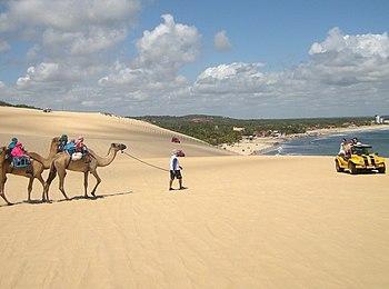 Genipabu - Rio Grande do Norte - Brazil