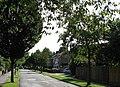 Golding Road - geograph.org.uk - 1417466.jpg