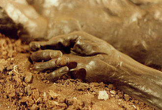 Grauballe Man - The well preserved hand of Grauballe Man