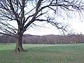 Graves Park. - geograph.org.uk - 122753.jpg