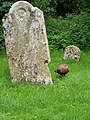 Gravestone, St Peter's Church, Shipton Bellinger - geograph.org.uk - 898798.jpg