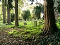 Graveyard at Hardmead Church - geograph.org.uk - 276549.jpg