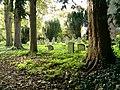 Graveyard at Hardmead Church - geograph.org.uk - 276549.jpg