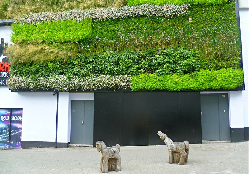 File:Green wall, Sutton town centre (geograph 3014022).jpg