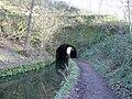 Gregory's Tunnel Western Portal - geograph.org.uk - 315914.jpg