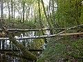 Guryevskiy r-n, Kaliningradskaya oblast', Russia - panoramio (56).jpg