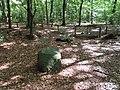 Hünxer Wald Teufelssteine 05.jpg