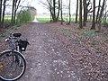 Hürtgenwald, Kleinhardt-Verlängerung, Blick auf Derichsweiler, 08.04.2012. - panoramio.jpg