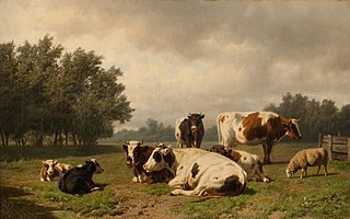 Koeien en schapen in een weide