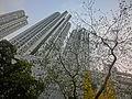 HK 大坑 Tai Hang 浣紗街 Wun Sha Street view 光明台 Illumination Terrace facade n trees Apr-2014.JPG