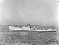 HMS Pellew, 1962 (IWM).jpg