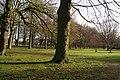Haagse Bos (4).jpg