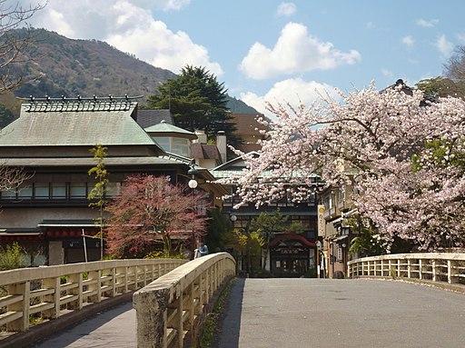 Hakone yumoto onsen 2