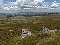 Haltonlea Fell - geograph.org.uk - 214604.jpg